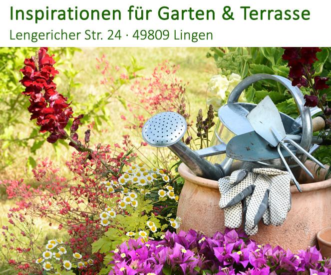 Blumenausstellung im Blumenhaus Jannink in Lingen